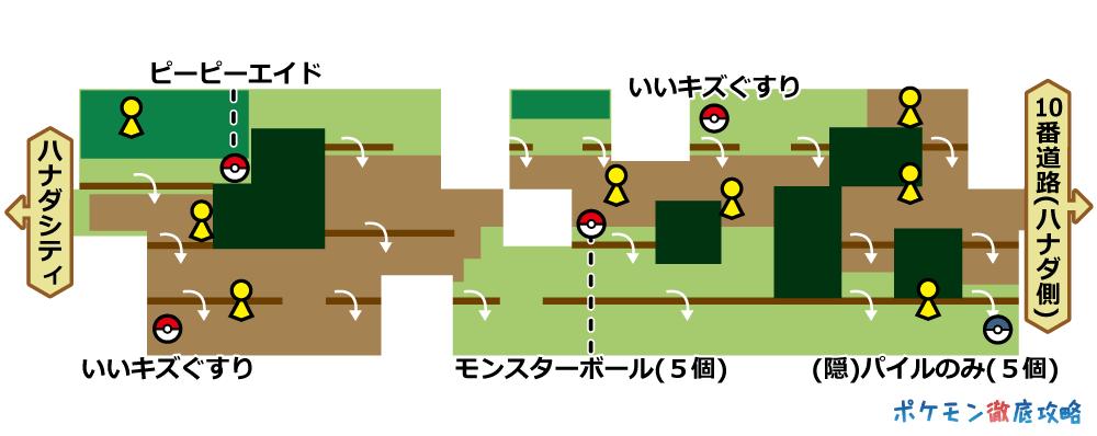 マップと出現ポケモン(ピカブイ)