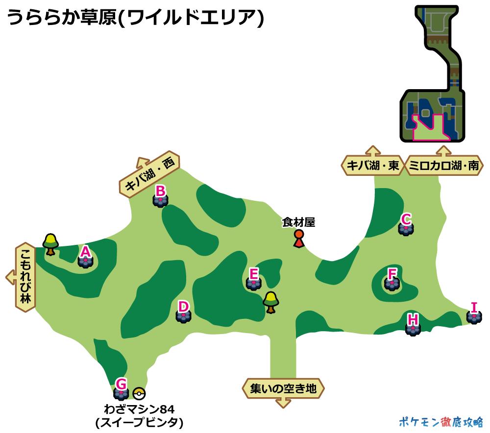 レコード ポケモン わざ ソード シールド